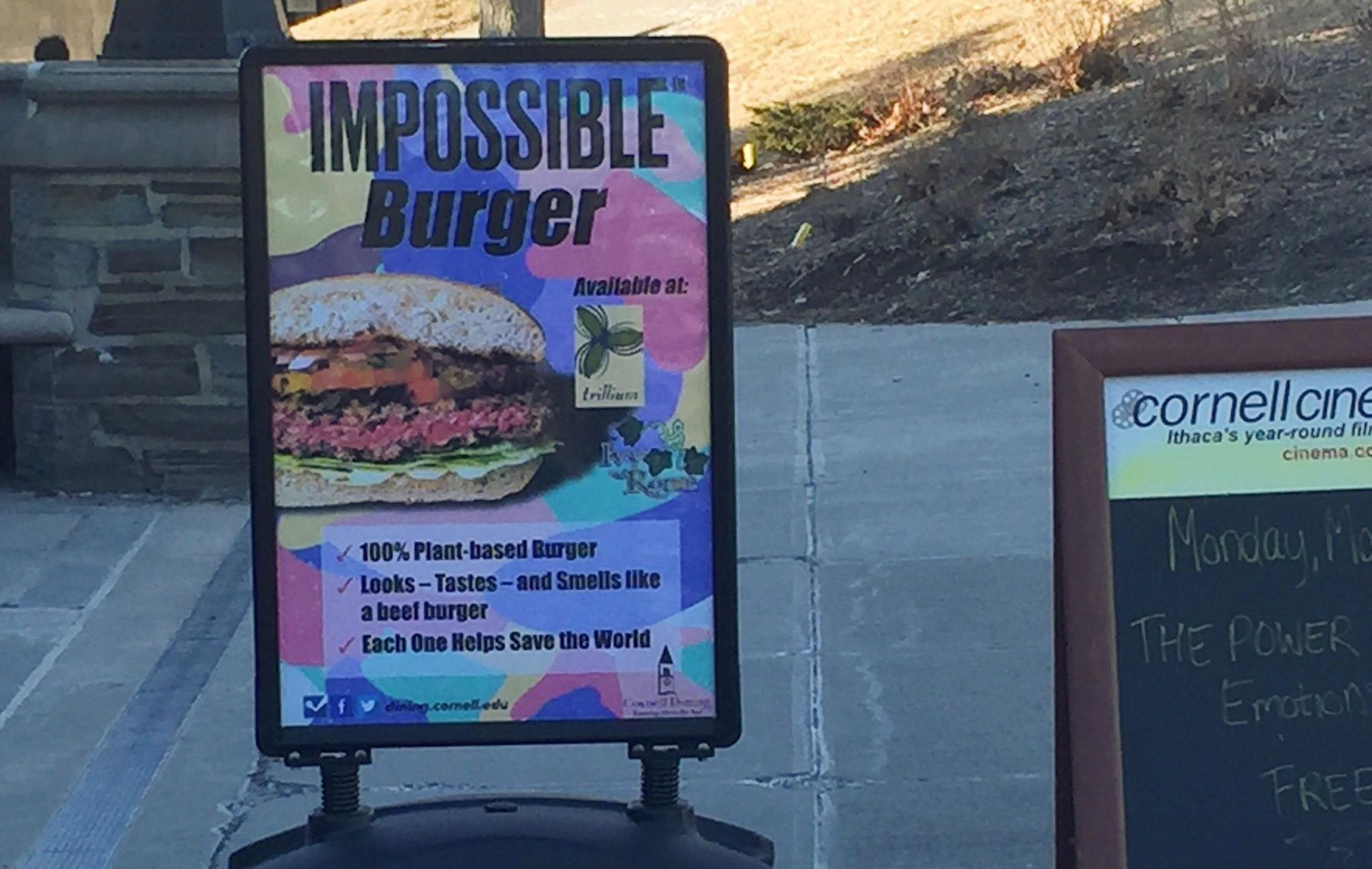 Impossible! This Average Veggie Burger Costs 10.99