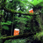 Five Missing in Amazon After Latest IFC Jungle Juice Gathering Expedition