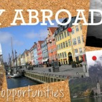 Poll: Your study abroad blog is the best